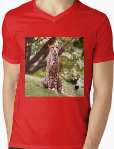 The Watching Cheetah Mens V-Neck T-Shirt