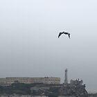 Grey Day in San Francisco by David Denny