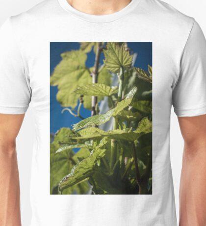 Wine Vine Unisex T-Shirt