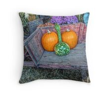 Winter Squash at the Farmers Market Throw Pillow
