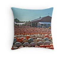 The Black Oak Ridge Road Farmer's Market, Wayne NJ USA Throw Pillow