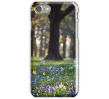 A Little Bit of Spring iPhone Case/Skin