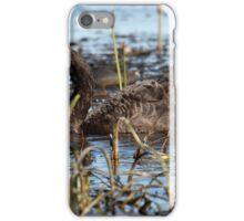 Black Swan & cygnets. iPhone Case/Skin