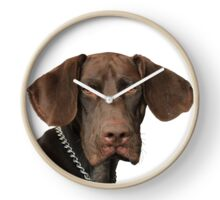 Glossy Grizzly German Shorthaired Pointer Clock