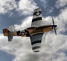 P51 Mustang by © Steve H Clark Photography