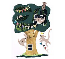 Monkey Treehouse Photographic Print