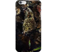 The Jewell iPhone Case/Skin