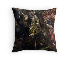 The Jewell Throw Pillow