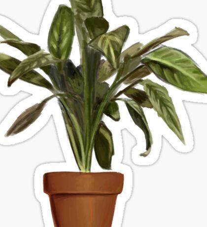 Ficus Sticker