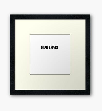 Meme Expert  Framed Print