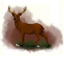 Mister Deer by Ajhasse