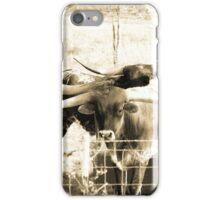 Long Horns  iPhone Case/Skin