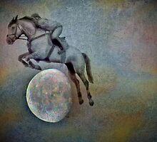 Ghost rider by missmoneypenny