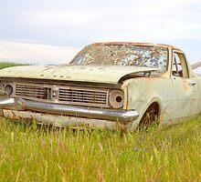 The Old Holden Farm Ute..... by mitpjenkeating