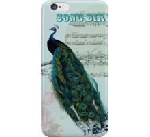 Bird Song - Peacock iPhone Case/Skin