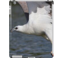 The Eagle Thief iPad Case/Skin