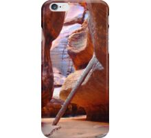 Driftwood Log in the Canyon Narrows iPhone Case/Skin