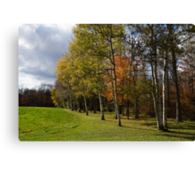Autumn Forests and Fields Canvas Print