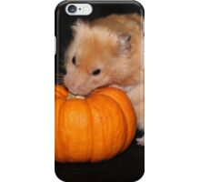 Crunchie with Pumpkin iPhone Case/Skin