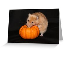 Crunchie with Pumpkin Greeting Card