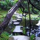 Kyoto Stepping stones by Sue Ballyn