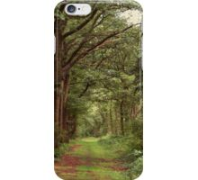Old Country Road iPhone Case/Skin