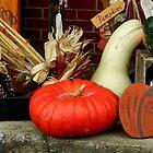 Autumn Still Life   ^ by ctheworld