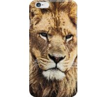 Rescued Lion iPhone Case/Skin