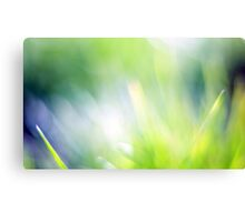 Beautiful green bokeh abstract background Canvas Print