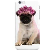 Hipster Pug Puppy iPhone Case/Skin