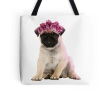 Hipster Pug Puppy Tote Bag