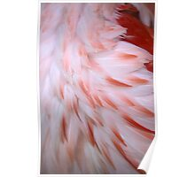 Flamingo #5 Poster