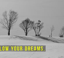 Follow your dreams by ak4e