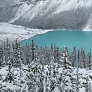 Peyto Lake, Banff Canada by Yool