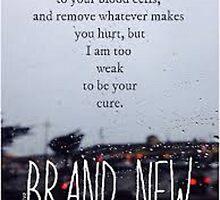 Brand New Lyrics by kittyholocaust
