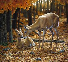 Autumn Doe and Fawn by csforest