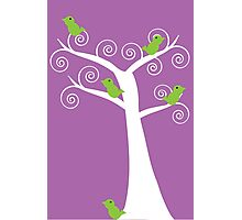 5 birds and a tree (purple background) Photographic Print