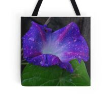 Tears for the Morning Tote Bag