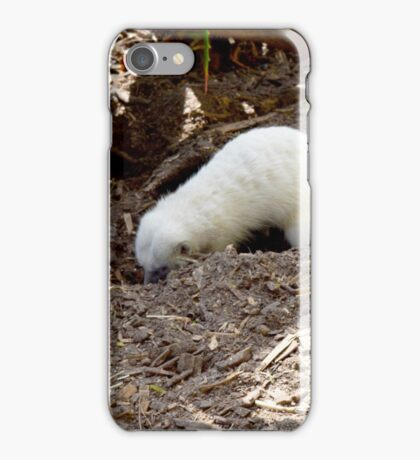 White Hungry Meerkat Digging For Tasty Juicy Bugs. iPhone Case/Skin