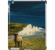 Four Sheep and Seven Sisters iPad Case/Skin