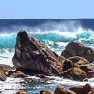 Hound Rock by GerryMac