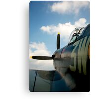 To the skies Canvas Print