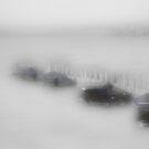 River of Fog by Brian Gaynor