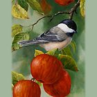 Chickadee and Apples Phone Case by csforest