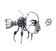 idiotfish by Joseph Arruda