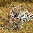 Proud Mom!! by jozi1