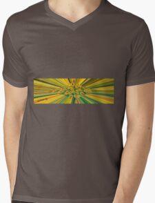 Colour Rays Mens V-Neck T-Shirt