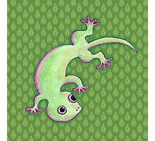 Gecko Photographic Print