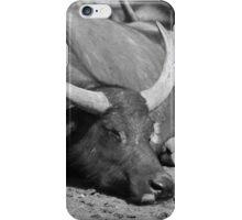 Sleeping Buffalo iPhone Case/Skin