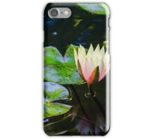 Water Lily in Japanese Gardens iPhone Case/Skin